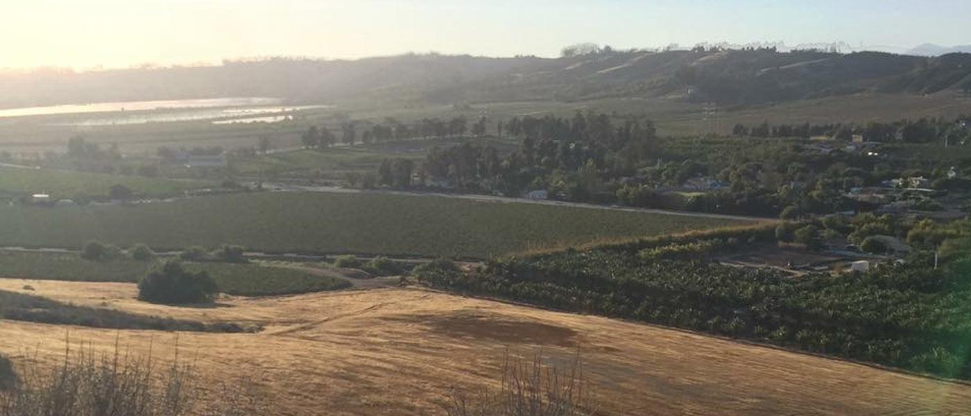Camarillo - Ventura County real estate information